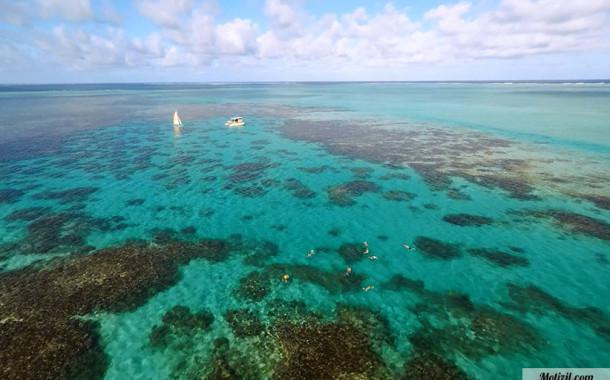 Snorkeling sur la côte est