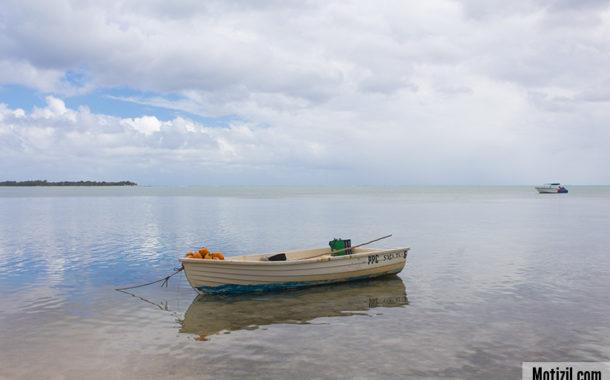 Excursion à l'Ile aux Bénitiers