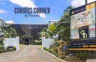 Curious Corner of Chamarel